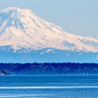 Premier Chiropractic Practice for Sale Between Seattle & Tacoma, WA